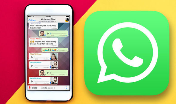 Recover Deleted WhatsApp Chat History from iPhone without Backup